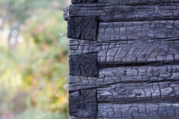 La technique du bois brûlé, qu'est-ce que c'est ?